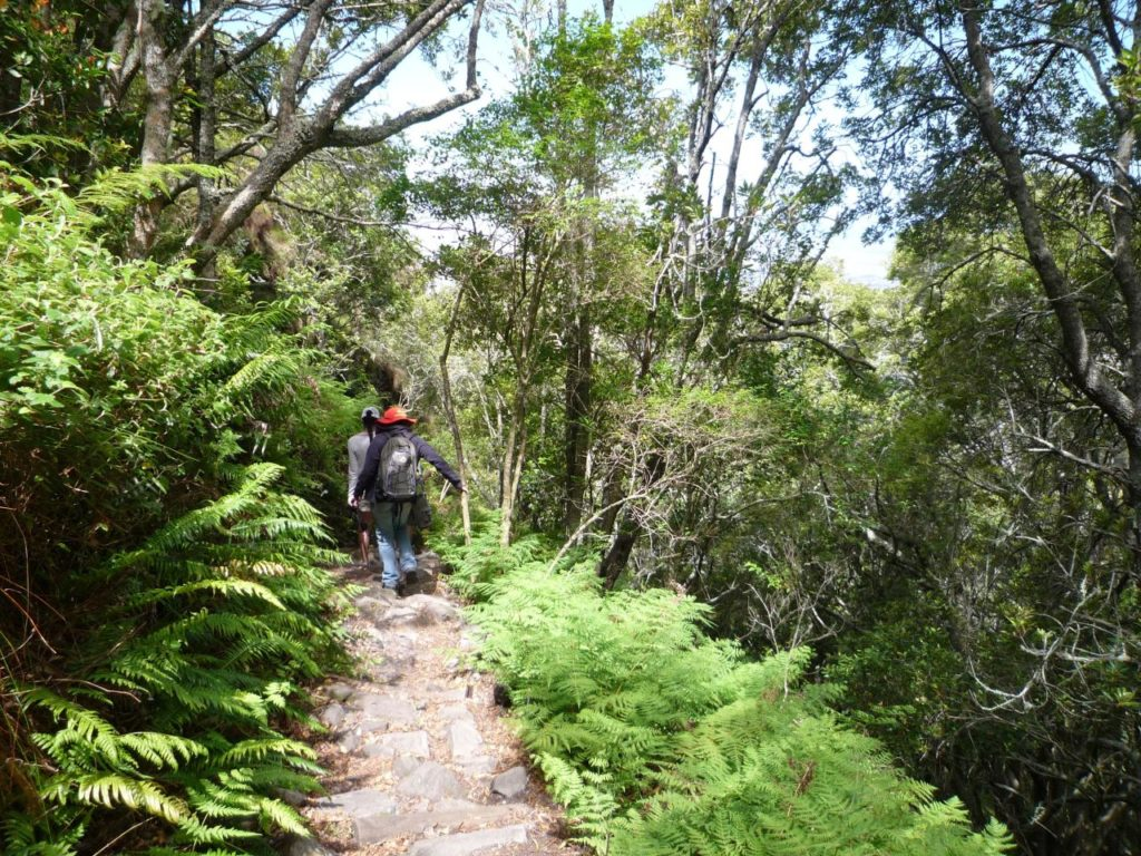 Table Mountain hiking route