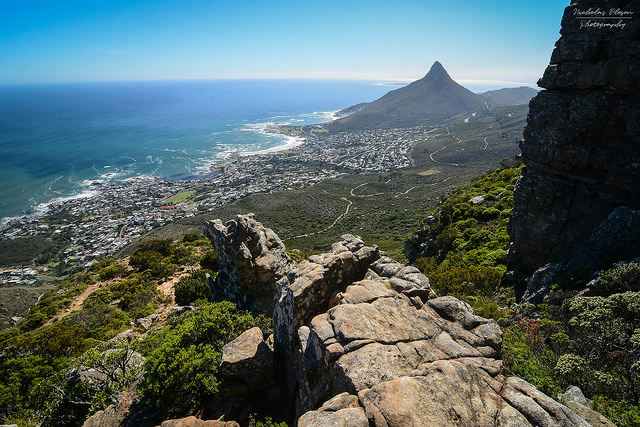 Hiking Guide Table Mountain