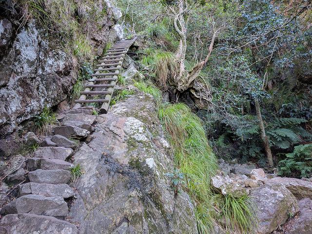 Panning Tabel Mountain hikes